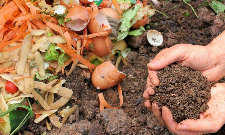 Vermikompostování a jeho výhody